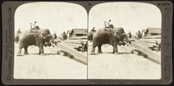 Elephant laborers piling timber in one of the great riverside yards at Rangoon, Burma